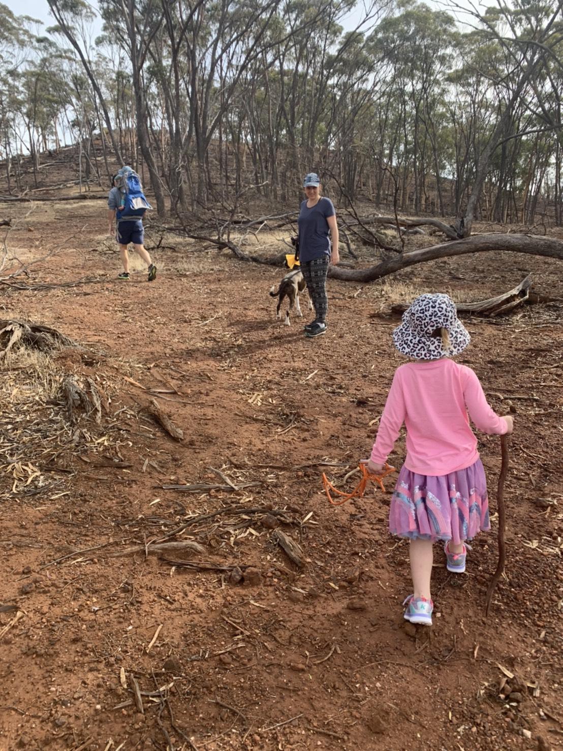 オーストラリアオーペア、田舎ならではの貴重な体験と楽しみ方