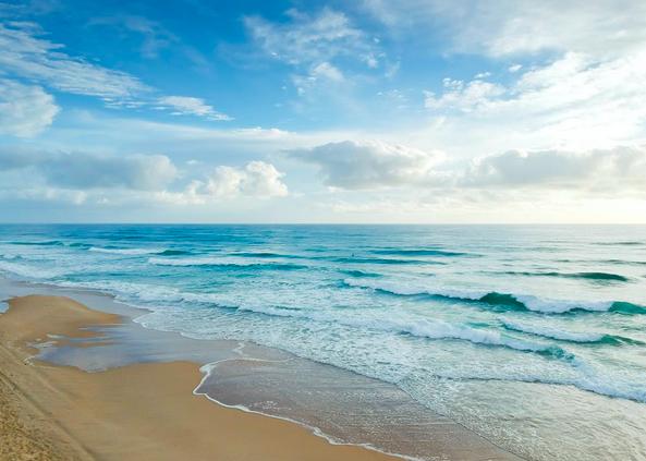 オーストラリアで大人アトピー改善。完治までの体験談ビーチ海水浴