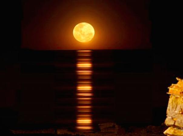 ブルーム「月への階段」を観に行く前にチェックすべき事!